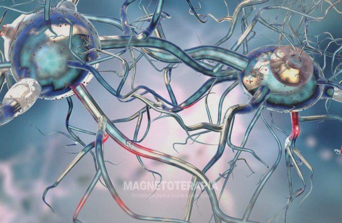 A atividade magnetoterápica na fisiologia das células